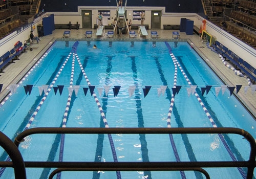 Bleu Pools And Spa Competition Pools